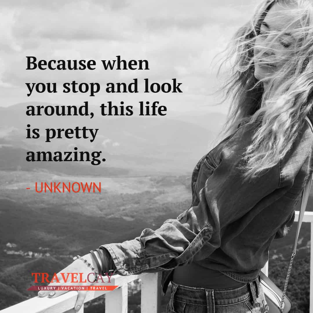 Because when you stop and look around, this life is pretty amazing - UNKNOWN 2