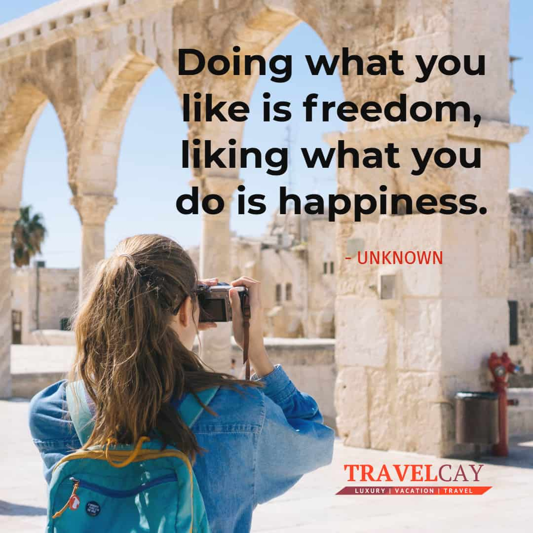 Doing what you like is freedom, liking what you do is happiness - UNKNOWN 1