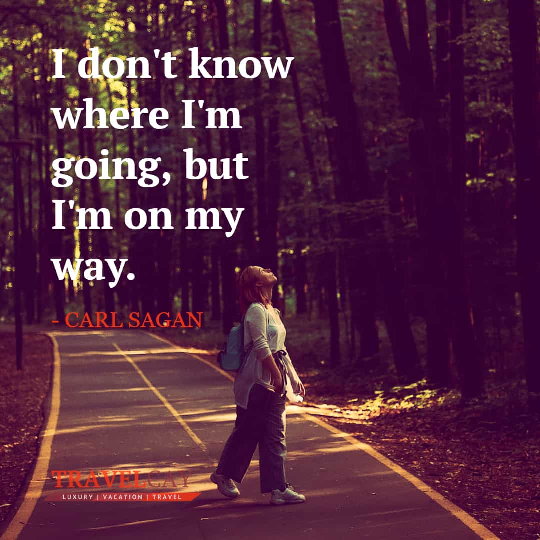 I don't know where I'm going, but I'm on my way - CARL SAGAN 1