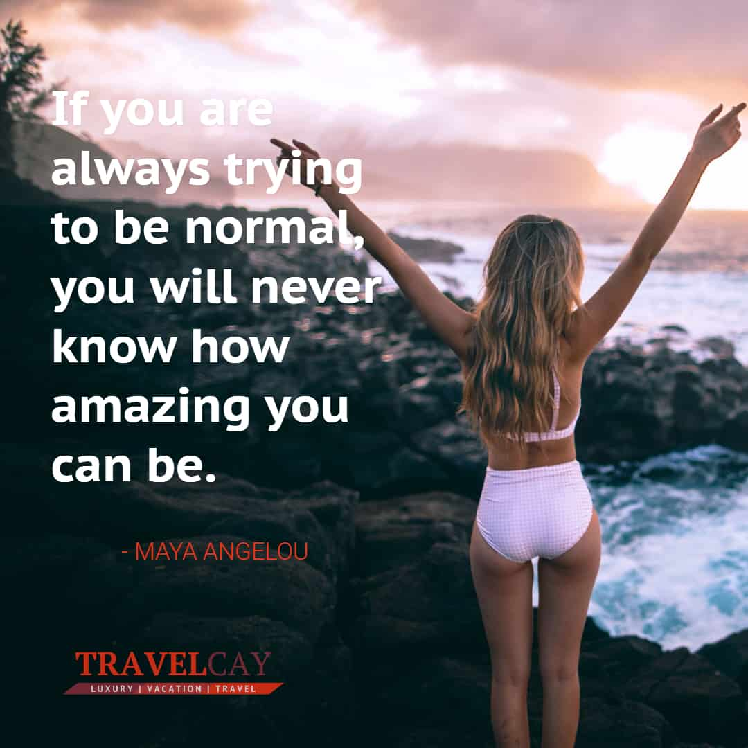 If you are always trying to be normal, you will never know how amazing you can be - MAYA ANGELOU 1