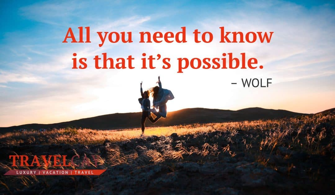 All you need to know is that it's possible – WOLF