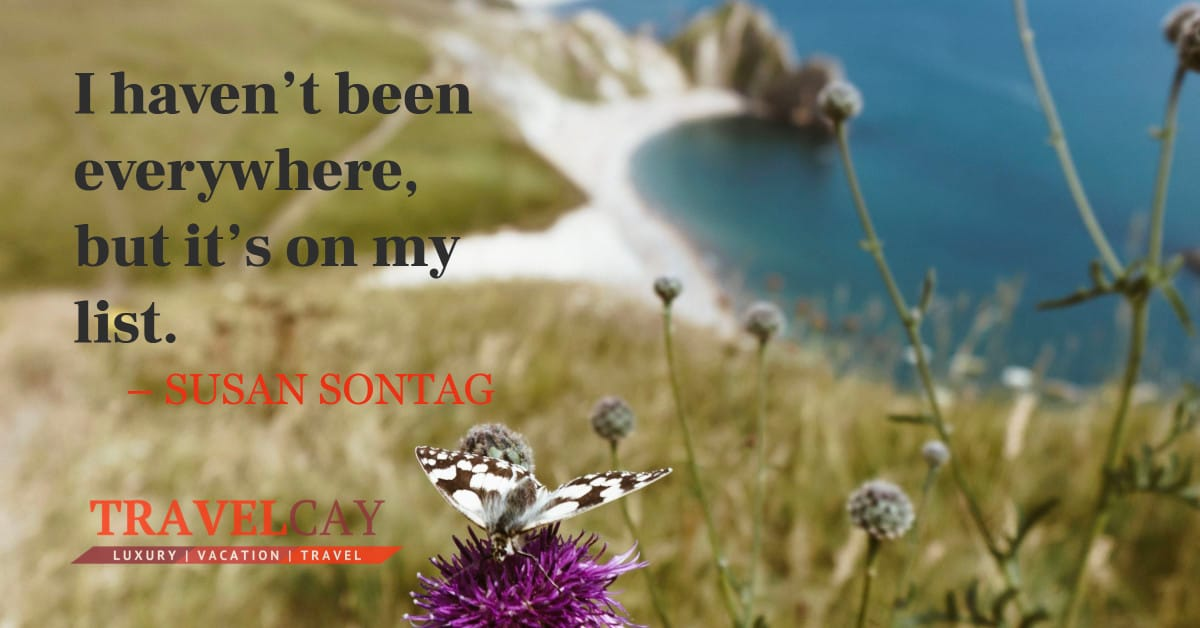 I haven't been everywhere, but it's on my list – SUSAN SONTAG 1