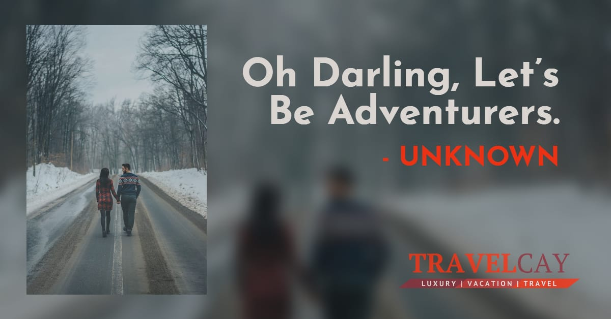 Oh Darling, Let's Be Adventurers - UNKNOWN 2